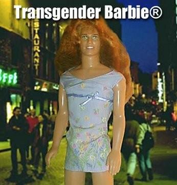 barbie_trans.jpg